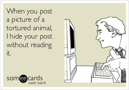 When you post a picture of a  tortured animal, I hide your post  without reading it.