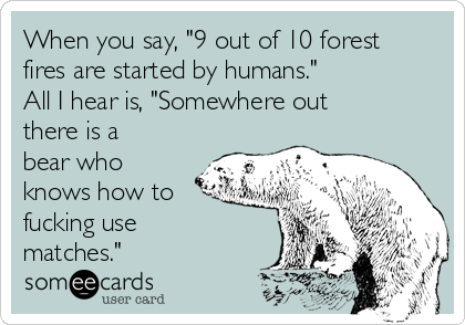 """When you say, """"9 out of 10 forest fires are started by humans."""" All I hear is, """"Somewhere out there is a bear who knows how to fucking use matches."""""""