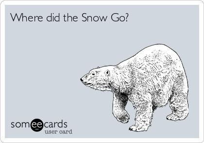 Where did the Snow Go?