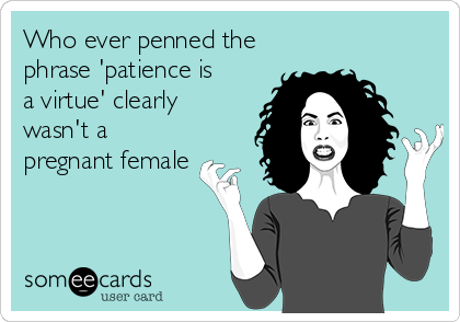 Who ever penned the phrase 'patience is a virtue' clearly wasn't a pregnant female