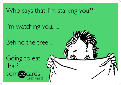 Who says that I'm stalking you??  I'm watching you......  Behind the tree...  Going to eat that?