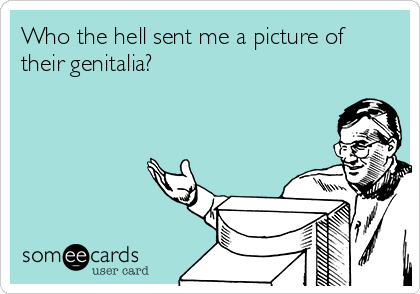 Who the hell sent me a picture of their genitalia?