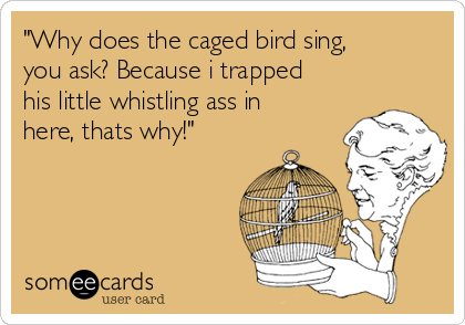 """""""Why does the caged bird sing, you ask? Because i trapped his little whistling ass in here, thats why!"""""""