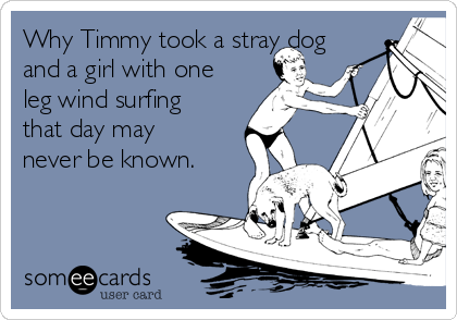 Why Timmy took a stray dog and a girl with one leg wind surfing that day may never be known.