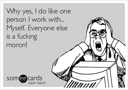 Why yes, I do like one person I work with... Myself. Everyone else is a fucking moron!