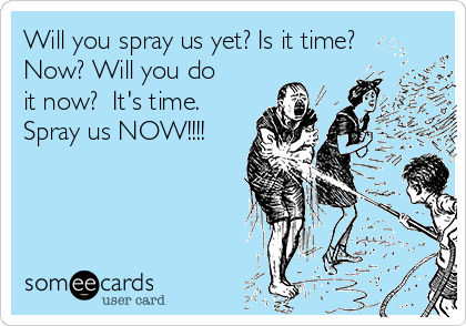 Will you spray us yet? Is it time? Now? Will you do it now?  It's time. Spray us NOW!!!!