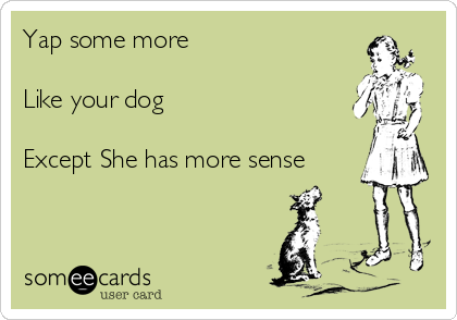 Yap some more   Like your dog   Except She has more sense