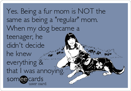 "Yes. Being a fur mom is NOT the same as being a ""regular"" mom. When my dog became a teenager, he didn't decide he knew everything & that I was annoying."