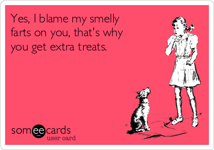 Yes, I blame my smelly farts on you, that's why you get extra treats.