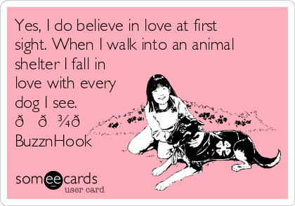 Yes, I do believe in love at first sight. When I walk into an animal shelter I fall in love with every dog I see.