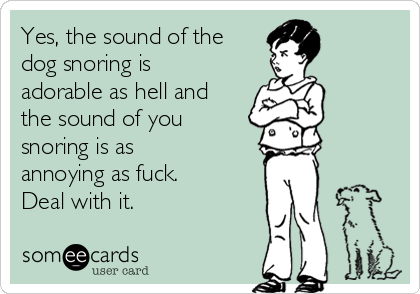 Yes, the sound of the dog snoring is adorable as hell and the sound of you snoring is as annoying as fuck. Deal with it.