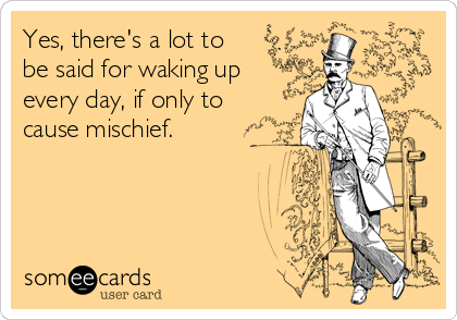 Yes, there's a lot to be said for waking up every day, if only to cause mischief.