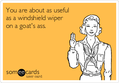 You are about as useful as a windshield wiper on a goat's ass.