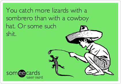 You catch more lizards with a sombrero than with a cowboy hat. Or some such shit.