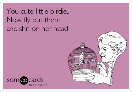 You cute little birdie.. Now fly out there  and shit on her head