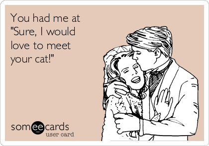 """You had me at """"Sure, I would love to meet your cat!"""""""