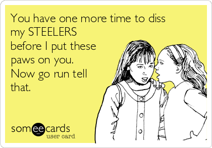 You have one more time to diss my STEELERS before I put these paws on you. Now go run tell that.