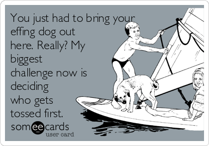 You just had to bring your effing dog out here. Really? My biggest challenge now is deciding who gets tossed first.