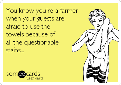You know you're a farmer when your guests are afraid to use the towels because of all the questionable  stains...