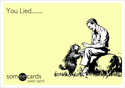 You Lied.........