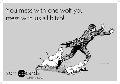 You mess with one wolf you mess with us all bitch!