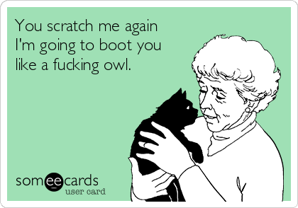 You scratch me again I'm going to boot you like a fucking owl.