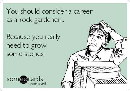 You should consider a career  as a rock gardener...  Because you really need to grow some stones.