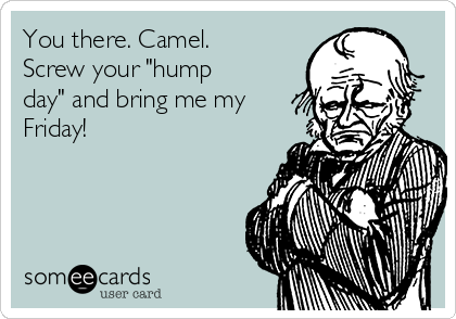 """You there. Camel.  Screw your """"hump day"""" and bring me my Friday!"""