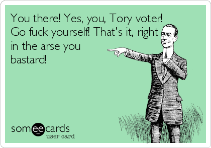 You there! Yes, you, Tory voter! Go fuck yourself! That's it, right  in the arse you  bastard!