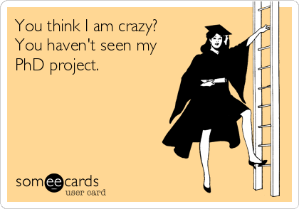 You think I am crazy? You haven't seen my PhD project.