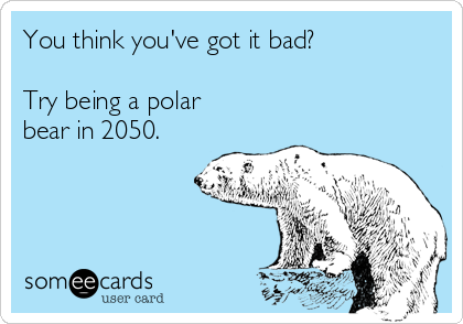 You think you've got it bad?  Try being a polar bear in 2050.