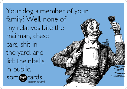 Your dog a member of your family? Well, none of my relatives bite the mailman, chase cars, shit in the yard, and lick their balls in public.
