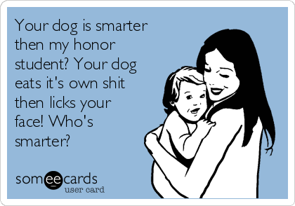 Your dog is smarter then my honor student? Your dog eats it's own shit then licks your face! Who's smarter?