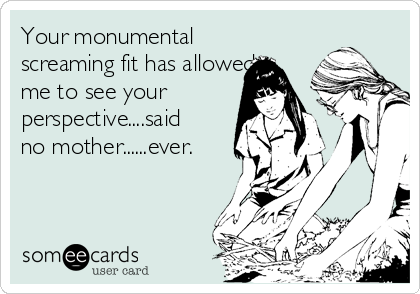 Your monumental screaming fit has allowed me to see your perspective....said no mother......ever.