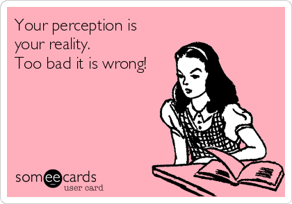 Your perception is your reality.  Too bad it is wrong!