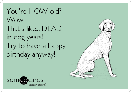 Birthday Memes Youre HOW Old Wow Thats Like DEAD In Dog