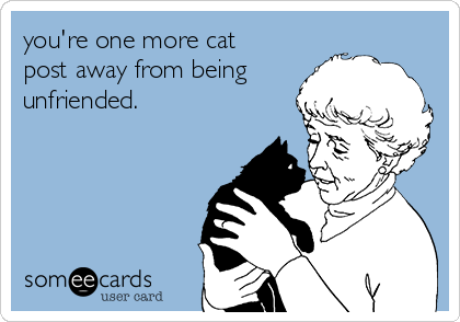you're one more cat post away from being unfriended.