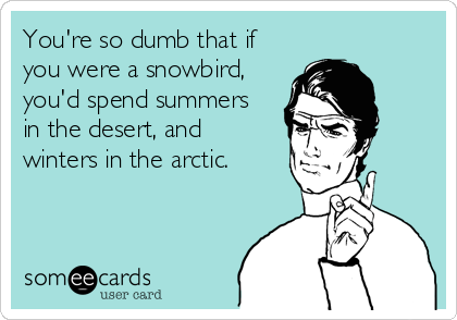You're so dumb that if you were a snowbird, you'd spend summers in the desert, and  winters in the arctic.