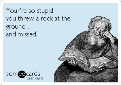 Your're so stupid you threw a rock at the ground... and missed.